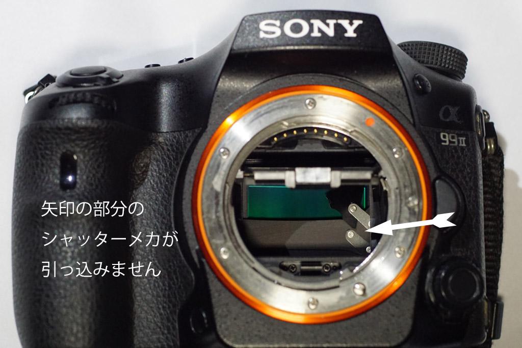 DSC00051-b.jpg