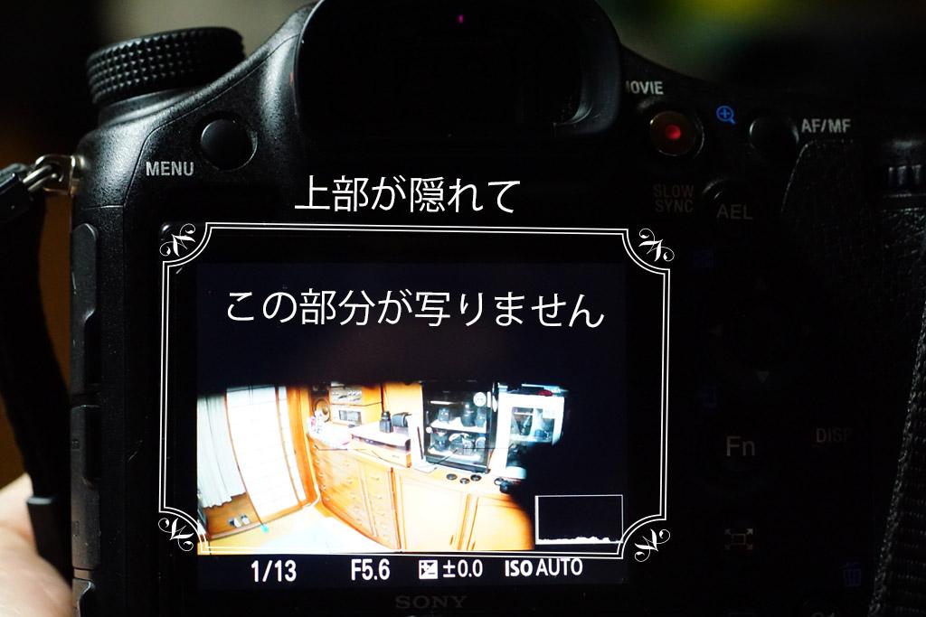 DSC00054-b.jpg